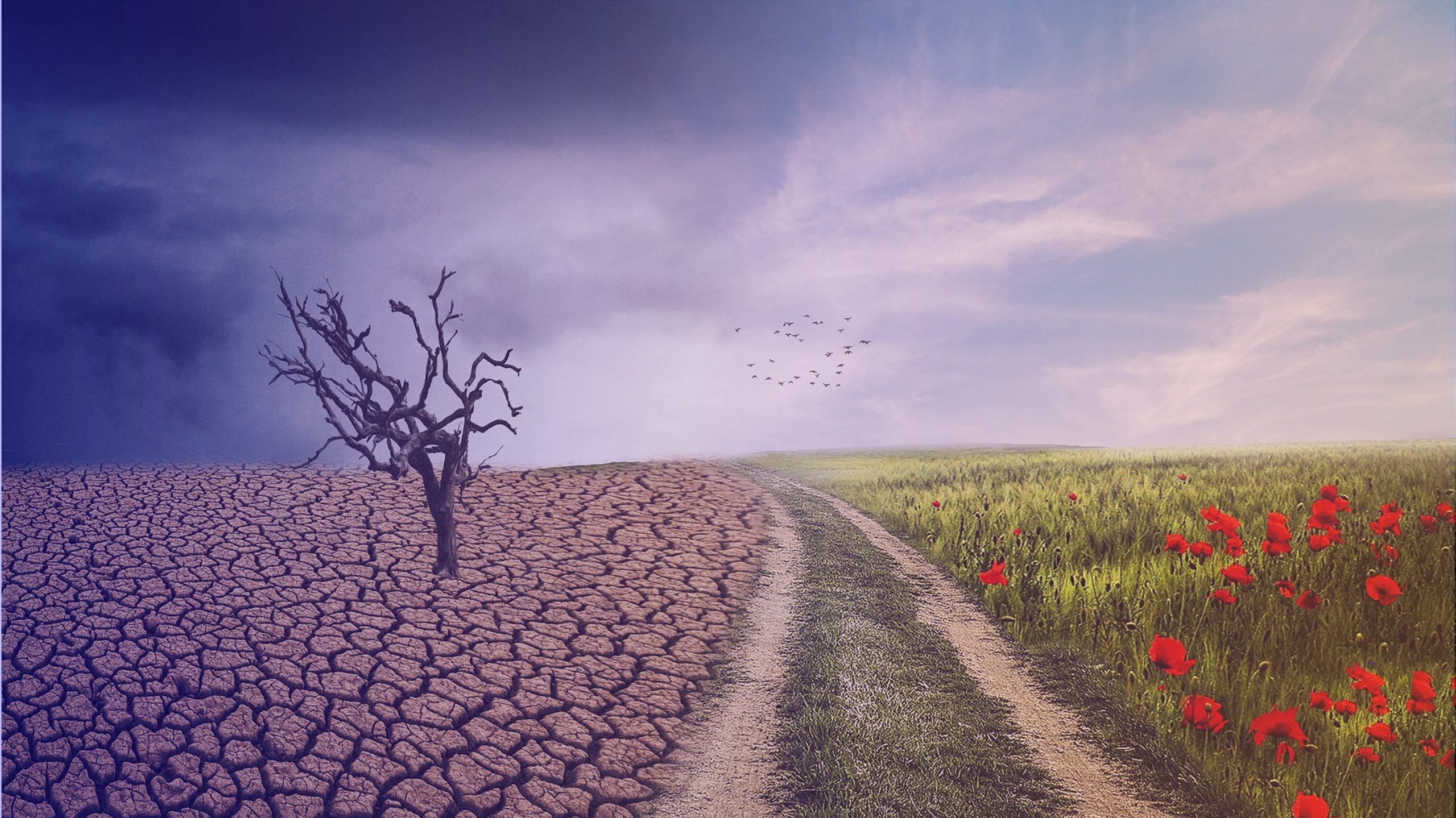 Représentation du deuil à gauche avec la nature morte et à droite avec les fleurs