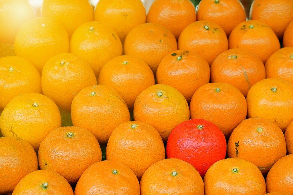 Oranges illustrant l'expression sois toi-même