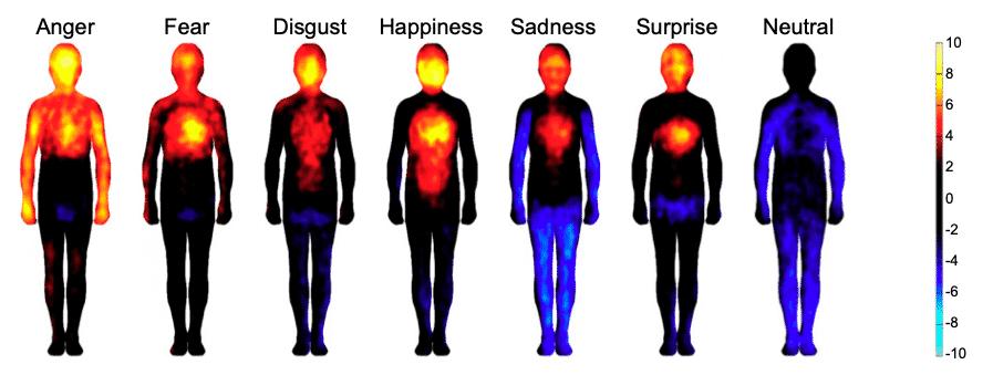 cartographie impact émotions sur les parties du corps selon leur intensité.