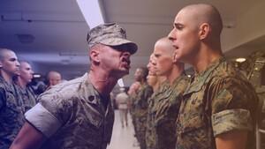 Militaire utilisant le biais d'autorité : chef oui chef
