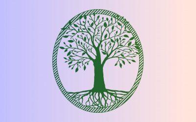 Dessiner son arbre de vie en 5 étapes pour devenir auteur de sa vie