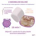 Atelier marshmallow challenge