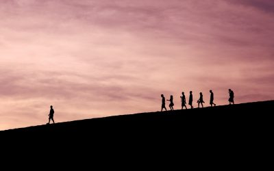 A-t-on vraiment tout le temps besoin d'un leader ?