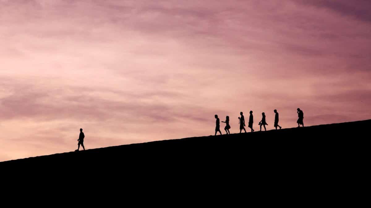 Le leader montre le chemin, les autres suivent
