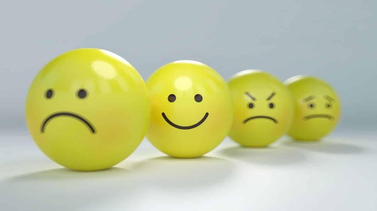 Les 4 émotions